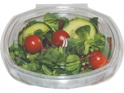Oval Salad Container  1000 cc